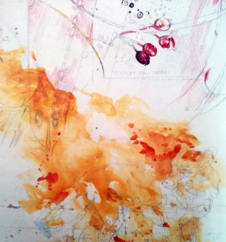 Vixen (a working title), unfinished, detail 1 mixed media on Mylar
